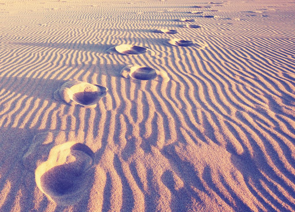 Shoe Prints in Raked Sand